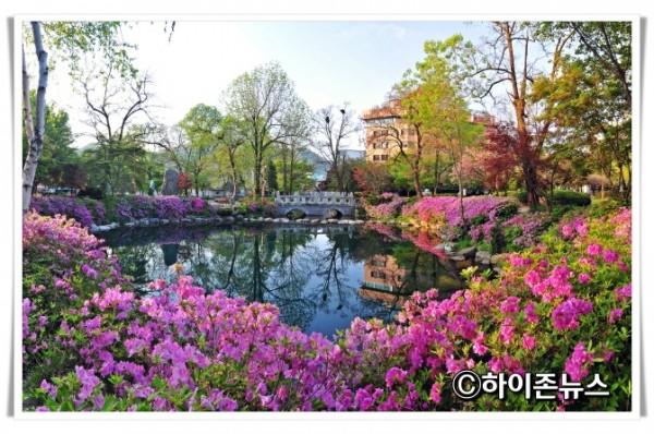 rehi황지연못-여름-1.jpg
